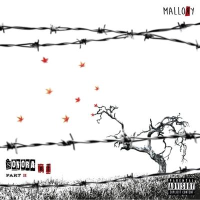 MALLORY – Sonora R.F. part II