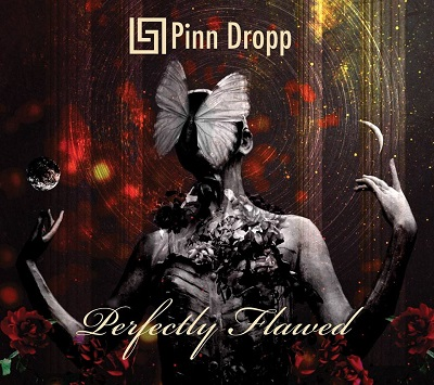PINN DROPP - Perfectly Flawed